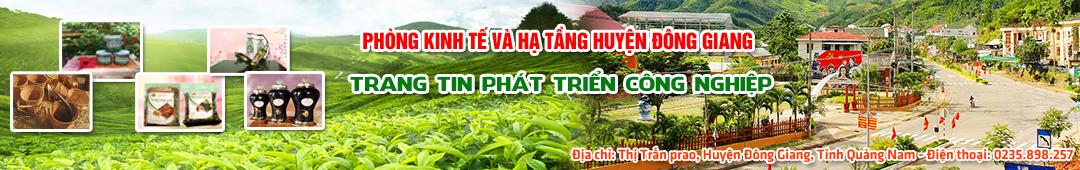 Phòng kinh tế và Hạ tầng huyện Đông Giang